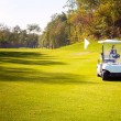 Golf-cart car on field of golf course — Stock Photo