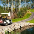 Stock Photo: Golf-cart car on bridge in golf course
