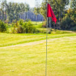 Golf-cup with flag on green, golf course — Stock Photo