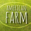 American farm on green grass poster, illustration farming — Foto Stock