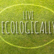Stock Photo: Live ecologically poster illustration of eco-friendly life