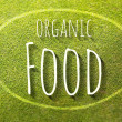 Organic food on green grass poster illustration of healthy eating — Stock Photo