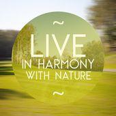 Vivre en harmonie avec l'illustration affiche nature de la vie naturelle — Photo