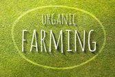 Organic farming on green grass poster illustration of eco-friendly business — Stock Photo
