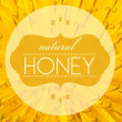 Foto Stock: Natural honey concept with flower macro background