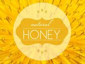 Natural honey concept with flower macro background — Stock Photo