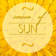Stock Photo: Season of sun with flower macro background