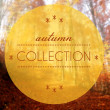 Autumn collection conceptual creative illustration — Stock Photo