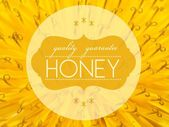 Quality guarantee honey with flower macro background — Stock Photo