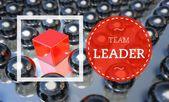 Team leader business, unique concept — Stock Photo