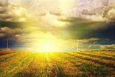 Beautiful sunset over farmfield — Stock Photo