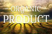 Produkt ekologiczny pojęcie gospodarstwa pole krajobraz — Zdjęcie stockowe