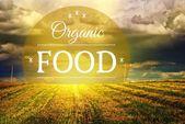 Organic food concept farm field landscape — Stock Photo