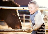 Smiling child with pony in mini zoo — Stock Photo