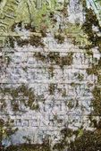 Pierre tombale juive écrit sur la pierre tombale — Photo