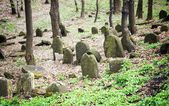 Old abandoned jewish cemetery in the forest — Stock Photo