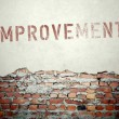 Improvement concept on old brick wall — Stock Photo #45364655
