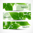 Abstract header natural eco green lives vector — Stock Vector
