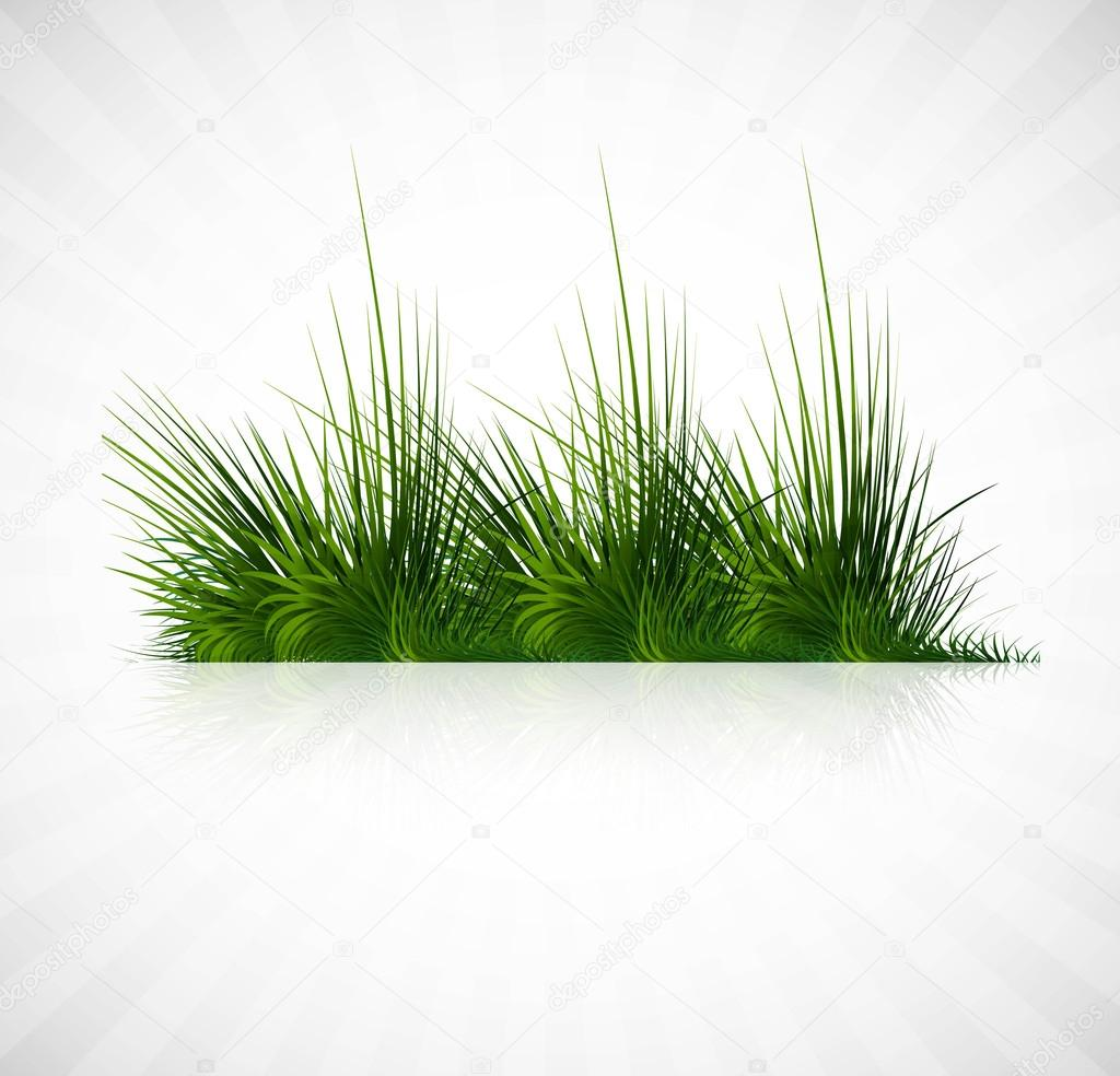 Abstract green grass with reflection vector whit background illustration — Stock Vector #12288849