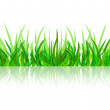 Stock Vector: Abstract green grass with reflection vector