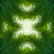 Abstract shiny green grass vector frame background - Stockvectorbeeld
