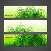 Abstract green grass with reflection header vector — Stock Vector