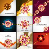Raksha bandhan beautiful celebration 9 collection presentation c — Stock Vector