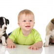 Baby with puppy dogs — Stock Photo #12329614
