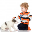 Cute boy examing dog — Stock fotografie