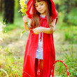 Girl collects flowers in the wood — Stock Photo #13835238