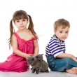 Stock Photo: Brother and sister with british kittens. isolated on white background