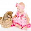 The girl plays with a puppy. isolated on white background — Stock Photo