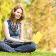 Young woman with laptop sitting on green grass — Stock Photo #13837219