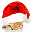Cute little kitten in red christmas Santa hat, isolated on white background — Stock Photo