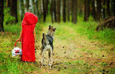 The girl with a wolf go on the wood — Stock Photo