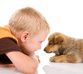 Boy with puppy. isolated on white background — Stock Photo
