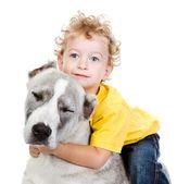 Kleine jongen en een grote hond. geïsoleerd op witte achtergrond — Stockfoto