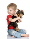 Child and yorkshire terrier. isolated on white background — Stock Photo