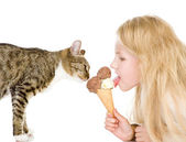 The cat and the girl eat ice-cream. isolated on white background — Stock Photo