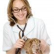 Veterinarian doctor making a checkup of a sharpei puppy dog — Stock Photo
