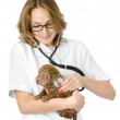 Female veterinarian examining a sharpei puppy dog — Stock Photo #18034421