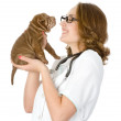 Stock Photo: Female veterinarian examining a sharpei puppy dog