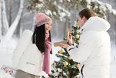 Lovers give gifts in the wood near the decorated tree — Stock Photo