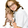 Female veterinarian and sharpei puppy dog, looking at camera. isolated on white background — Stock Photo
