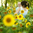 Mother with her son in the field with sunflowers  — Stock Photo