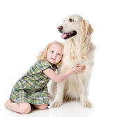 Girl embraces a Golden Retriever. looking away. isolated on white — Stock Photo