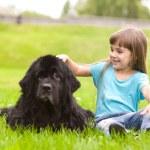 Girl petting a dog — Stock Photo