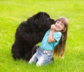 Novofundlanďan políbí holka — Stock fotografie