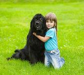 Dziewczyna tulenie nowej funlandii pies — Zdjęcie stockowe