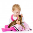 Girl playing with cat. isolated on white background — Стоковая фотография